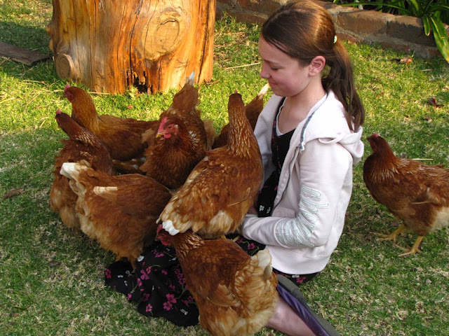 Erin+and+Chickens