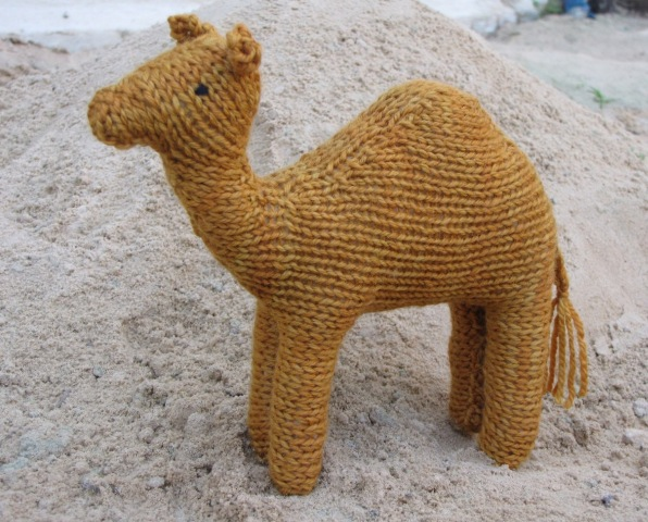 Knitting Jobs Near Me : Chicken diaries and a camel test knit natural suburbia