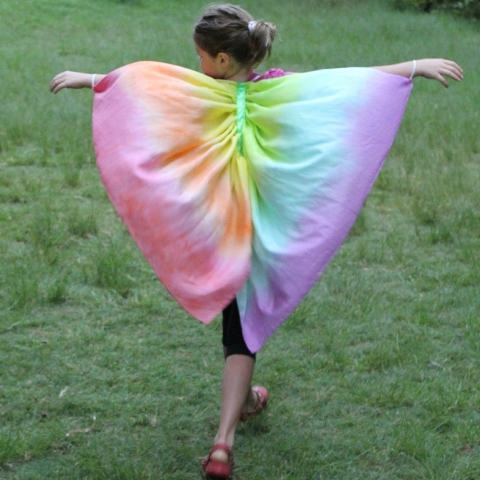 ziezo - rainbow wings