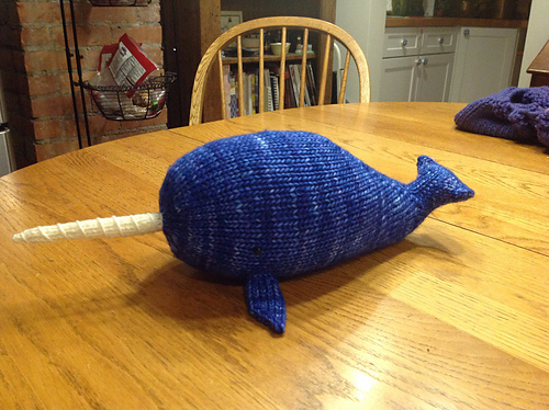 Nori the Narwhal Test Knit